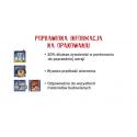 WIERTŁO DO BETONU IRWIN MASONRY 6X60/100